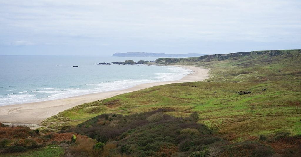 Ballylinny Holiday Cottages Beach